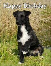 Patterdale Terrier Dog Design A6 Textured Birthday Card BDPATTERDALE3 paws2print