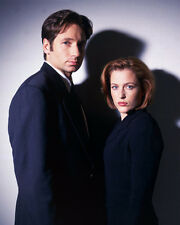 Gillian Anderson & David Duchovny (1284) 8x10 Photo
