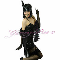 Flapper Fancy Dress Charleston Costume Gatsby 20s Outfit Plus Size 1920s Adult