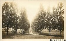 1910s Real Photo Postcard; Tree Lined Road, Fairfield CA Solano County Unposted
