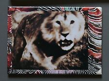 Peter Beard Fridge Photo Magnet 9x7cm, Lion Charge, 1964, Angreifender Löwe, Rar
