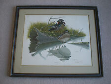 Original WOOD DUCK Hunting Print Lithograph Picture Sloan Wade Collection ~