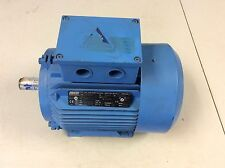 Theo Halter DET100LHD BE668497 230/400 V 1425 min-1 3 kW 3 Phase Induction Motor