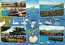 BT1137 saluti da ravena lago maggiore swan cygne  italy