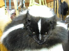 Skunk Fur Hat with Full Face Handmade Large Hat # 1000