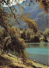 BR20974 La Mare a Poule d Eau Ile de la Reunion France