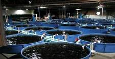 How to Fish Farm 30 Books on CD-ROM Culture Hatching Diseases Eggs Ponds Breed