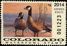 COLORADO  #25 2014  STATE DUCK STAMP CANADA GEESE by Richard Clifton