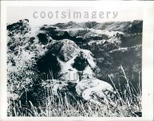 1944 WWII Lone Allied Tank on Imphal-Ukhrul Road India Press Photo