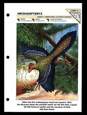 """ARCHAEOPTERYX"" PREHISTORIC ANIMAL/WILD LIFE FACT FILE FLYING REPTILE INFO-CARD"