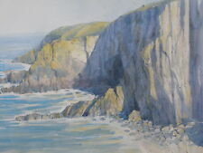 RARE COLIN ALLBROOK R.I  R.S.M.A  TURNER WINNER ORIGINAL BAGGY POINT PAINTING