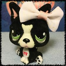 Littlest Pet Shop French Bulldog #978 Fuzzy Black With Green Eyes BLEMISHED