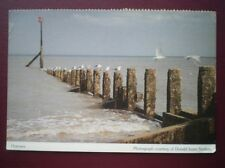 POSTCARD ESSEX HORNSEA - VIEW OUT TO SEA