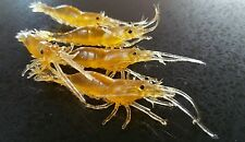 25 pack!  Soft  Prawn Shrimp plastic Fishing Lure 65mm FishingTackle