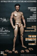ZC Toys 1/6 Scale Muscular Figure Body ZC03 With Head Compatible with Hot Toys