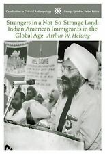 Strangers in a Not-So-Strange Land: Indian American Immigrants in the Global Age