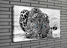 Original Oil Painting HD Print On Canvas Wall Art, Black&White Leopard No Framed