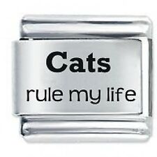 CATS RULE MY LIFE - Daisy Charms by JSC Fits Classic Size Italian Charm Bracelet