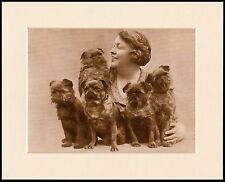BRUSSELS GRIFFON LOVELY LITTLE DOG PRINT LADY 5 DOGS MOUNTED READY TO FRAME