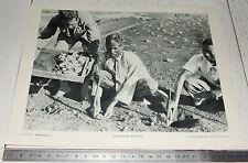 PHOTO ECOLE 1950 COLONIES AFRIQUE MADAGASCAR REPIQUAGE DU TABAC