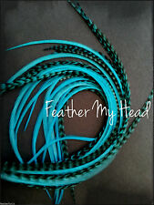 "Super Long 11""- 14"" Feather Extension For Hair,  Whiting Eurohackle, Turquoise"
