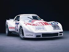 "1974 Greenwood Chevrolet Corvette IMSA Road Mini Poster 13""x19"" HD"