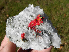 RARE,EXQUISITE VIVD RED REALGAR CRYSTALS WITH QUARTZ CRYSTALS,MINOR PYRITE,PERU