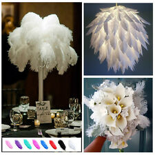 Wholesale Pretty  Natural Ostrich Feathers Wedding Party Deco 20-25cm white