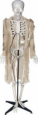 HALLOWEEN TALKING SKELETON LIGHTS  SOUNDS PROP DECORATION HAUNTED HOUSE