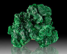 "2.3"" Dark Green Silky Radiating FIBROUS MALACHITE Crystals Congo for sale"