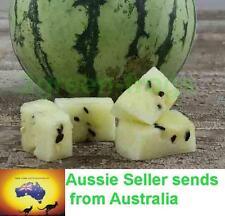 Heirloom Cream of Saskatchewan Watermelon 6 Seeds *UNIQUE*EXOTIC* AUSSIE SELLER