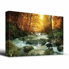 Wooded stream in Autumn - Canvas Art Home Decor - 24x36 inches