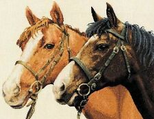 DMC - HORSES CROSS STITCH KIT (K5380)