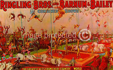 Ringling Bros Barnum And Bailey Vintage Circus Poster Under the Big Top 18x24