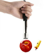 Steel Easy Twist Core Seed Remover Fruit Apple Corer Pitter Seeder Kitchen Tool