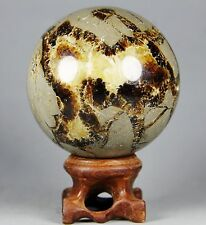 274g Polished DRAGON SEPTARIAN sphere Crystal w/Rosewood Stand Madagascar