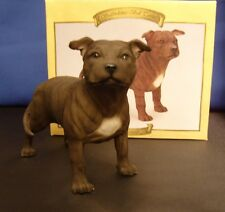 Brown Staffordshire Bull Terrier standing  staffy by Leonardo Collection