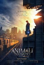ANIMALI FANTASTICI E DOVE TROVARLI MANIFESTO J.K. ROWLING DAVID YATES SCAMANDER
