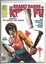 DEADLY HANDS of KUNG FU #28 BRUCE LEE STORY RARE MAGAZINE CLASSIC KUNG FU COVER