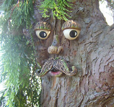 Tree Face.  Garden ornament. sculpture, statue, tree art decorations, Gifts