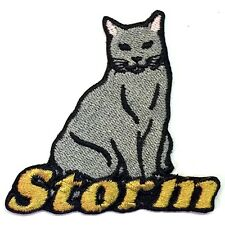 Chartreux Cat Custom Iron-on Patch With Name Personalized Free