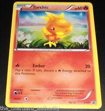 Torchic XY37 Black Star Promo XY Holo Rare Hoenn Collection Pokemon Cards