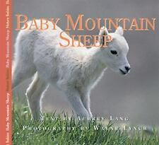Nature Babies: Baby Mountain Sheep by Aubrey Lang (2007, Hardcover)