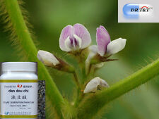 DR T&T 100g concentrated powder 1: 7 Dan Dou Chi Prepared soy bean