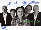 MARILLION SIGNED 10X8 PHOTO, GREAT STUDIO IMAGE, LOOKS GREAT FRAMED