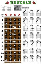 Ukulele Fretboard Chord Wall Chart Poster Ukelele Uke Notes Chords