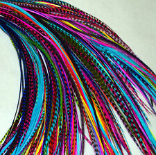 "Real Feather Hair Extensions Bulk 25 Mixed Colours 7-9""+ UK Seller"