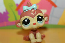 LPS Littlest Pet Shop Figur Affe Gorilla #2408, super niedlich