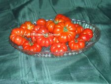 "Costoluto Genovese ""Ribbed of  Italy"" Red Tomato 20 Heirloom Seeds Special"" ."