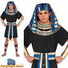 EGYPTIAN MALE PHARAOH KING ADULT BOOK WEEK one size- mens fancy dress costume